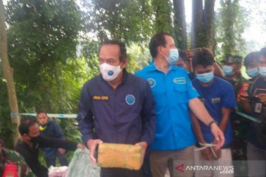 BNN: 141 kg ganja asal Aceh akan diedarkan di Sumut