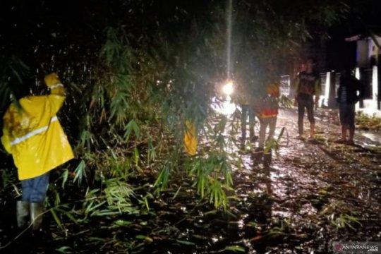 Jalur utama selatan Cianjur kembali tertutup pohon tumbang