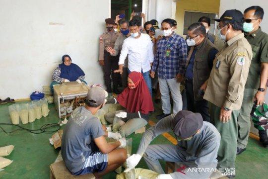Wakil Menteri Lingkungan Hidup tinjau pabrik pengolahan daun kratom