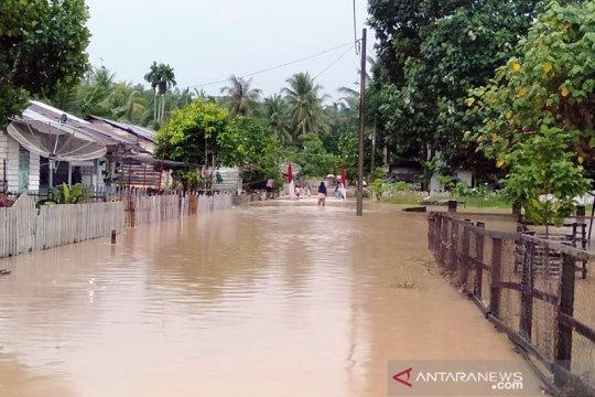 Sebanyak 206 rumah terendam banjir di Aceh Timur