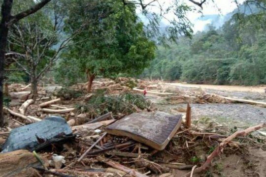 Banjir bandang di Kabupaten Langkat hanyutkan pohon kayu
