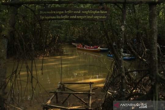 Cerita Karst China dan Mangrove Balikpapan