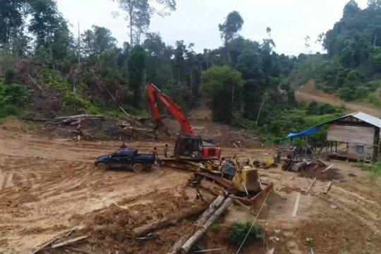 Polda Aceh ungkap pembalakan liar di Aceh Timur