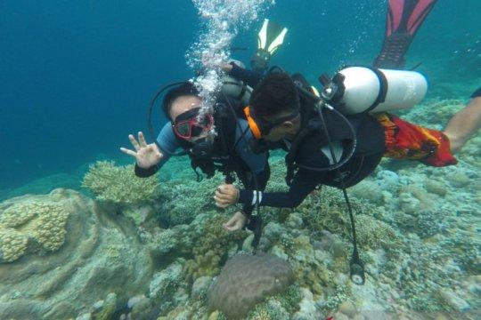 Wakatobi bisa jadi destinasi wisata unggulan, sebut Wamendes PDTT