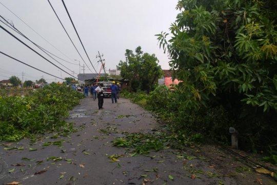 BMKG: Wilayah Jatim berpotensi terjadi angin kencang dan hujan deras