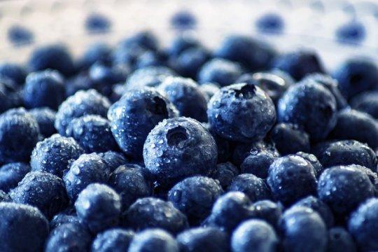 "Blueberry, ""superfood"" mengandung bahan perawatan kulit"