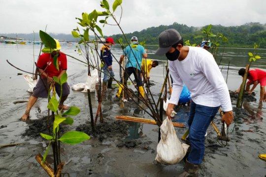 Warga tanam mangrove dengan teknik klaster di perairan Nusakambangan