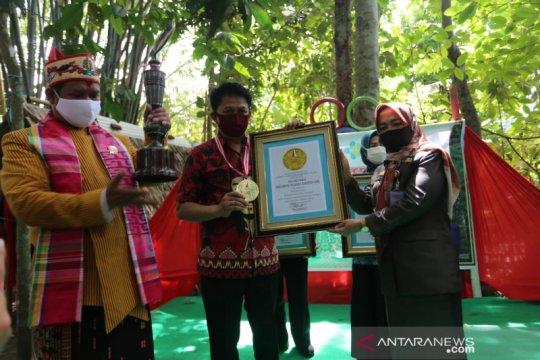 Gerakan tanam 10.000 pohon kelor di Gowa diganjar penghargaan Leprid