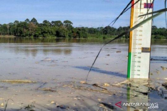Sepekan terakhir debit air Sungai Batanghari meningkat signifikan