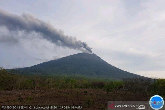 Gunung Ili Lewotolok erupsi