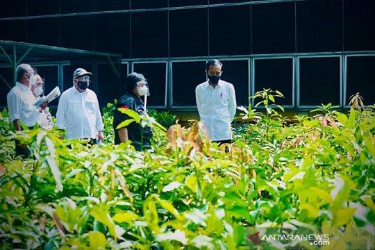 Presiden tinjau pusat pembibitan untuk atasi bencana ekologis