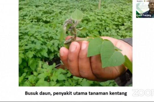 Penggunaan benih bioteknologi dinilai mampu hemat biaya produksi