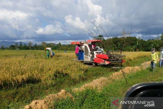 Jurus Bulog Sultra menjaga ketahanan pangan di saat pandemi