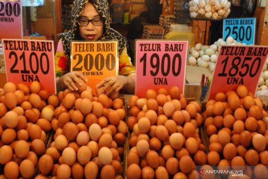 Serap produksi, Kementan gelar program telur murah di Jabodetabek