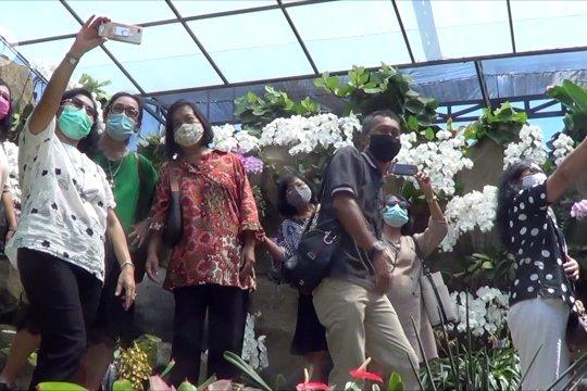 Agrowisata Anggrekdestinasi baru wisatawandi Denpasar