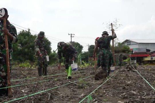 Dukung swasembada jagung Kodim Pekalongan buka lahan tidur