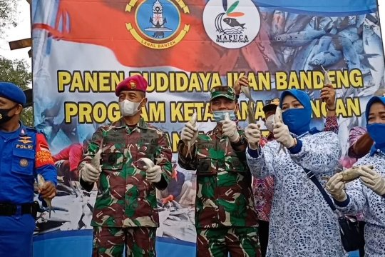 TNI AL kerahkan warga pesisir jaga ketahanan pangan