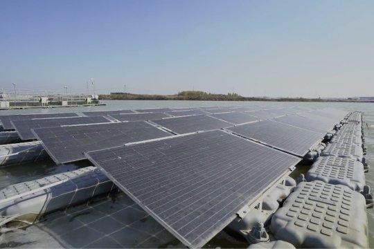 Pertanian pintar bantu pembangunan berkualitas tinggi di Kota Nanjing, China