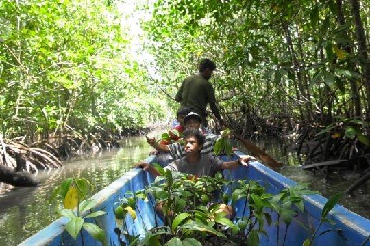 Misi EcoNusa, potret inisiatif warga menjaga hutan dan laut