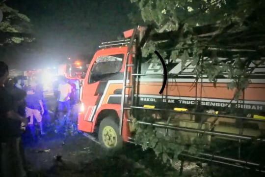 Pohon tua tumbang timpa truk, pantura Jateng macet 3 km