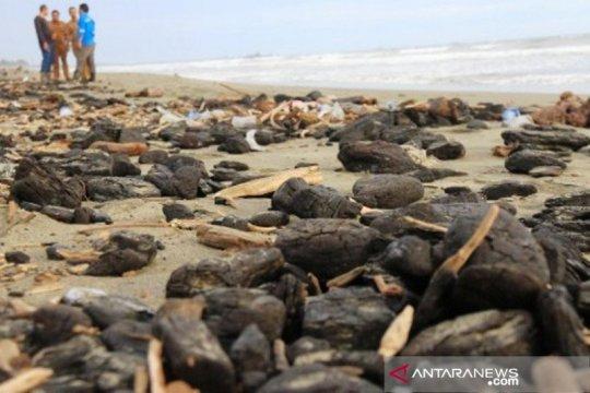Pemda didesak serius tangani tumpahan batu bara di pesisir Aceh Barat