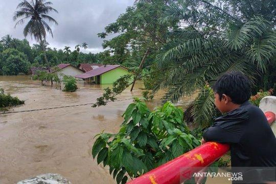 WALHI: Banjir Aceh akibat perubahan fungsi hutan