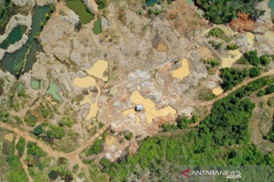 5.000 Ha hutan lindung di Nagan Raya rusak akibat tambang ilegal