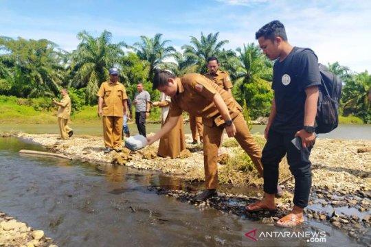 Pemkab Nagan Raya telusuri dugaan pencemaran limbah di aliran sungai
