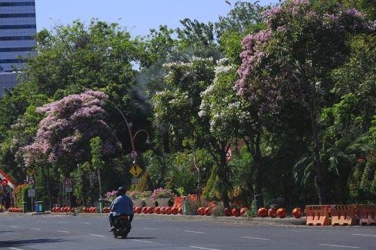 Ruang terbuka hijau di Surabaya capai 21,99 persen
