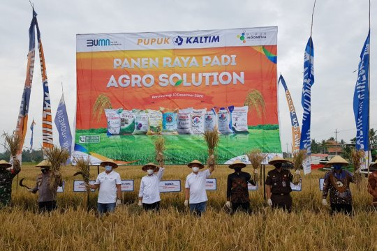 Pupuk Indonesia luncurkan Agro Solution genjot produktivitas pertanian