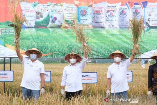 Agro Solution Pupuk Kaltim tingkatkan produktivitas hingga 76 persen