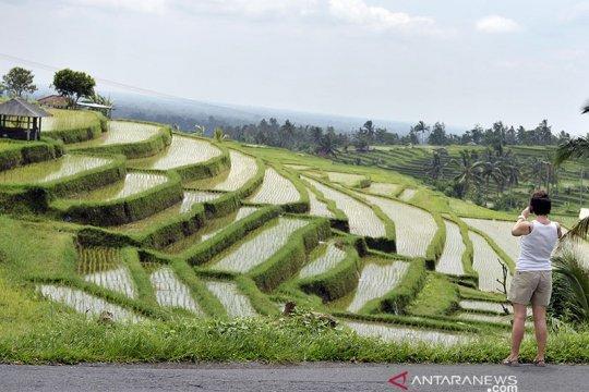 Mentan: Perkuat pertanian dengan pelestarian adat budaya