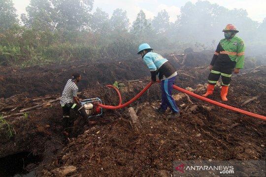 Kebakaran hutan dan lahan di Pontianak