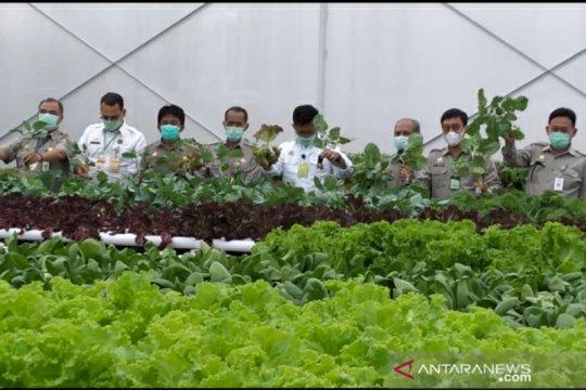 "Kementan siapkan pertanian modern melalui ""smart green house"""