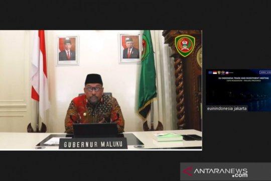 Maluku tawarkan investasi telekomunikasi kepada Uni Eropa lewat CEPA