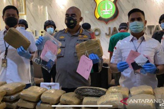 """Polisi gagalkan peredaran 173 kg ganja """"kedongdong"""""""
