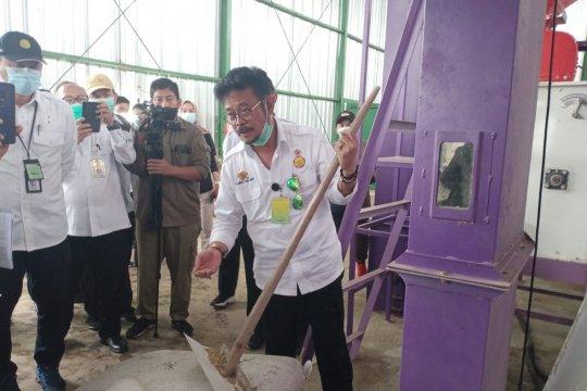Mentan pacu produksi hingga hilirisasi beras di food estate Kalteng