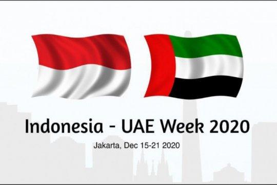 Minat perusahaan UAE ekspansi ke Indonesia tinggi meski pandemi