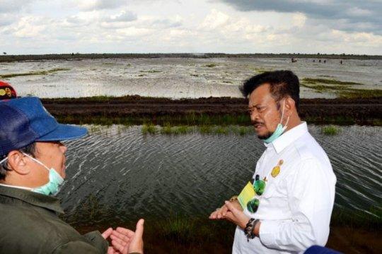 """DPR minta Kementan evaluasi total program """"food estate"""""""