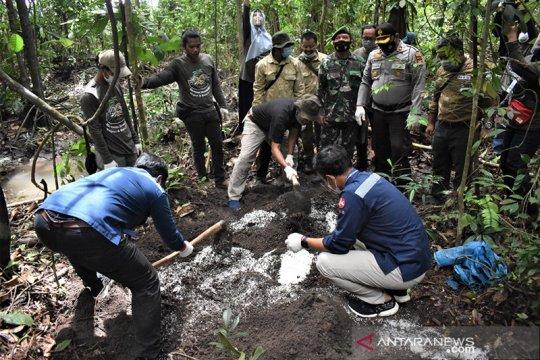 Daerah jelajah gajah sekitar Tol Permai dihijaukan ribuan pohon buah
