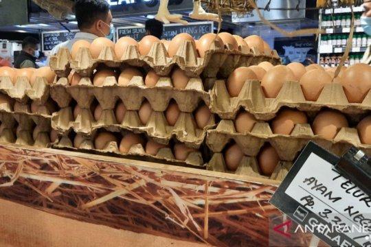 Jelang Natal, harga telur di Pasar Tebet Barat tembus Rp30 ribu per kg