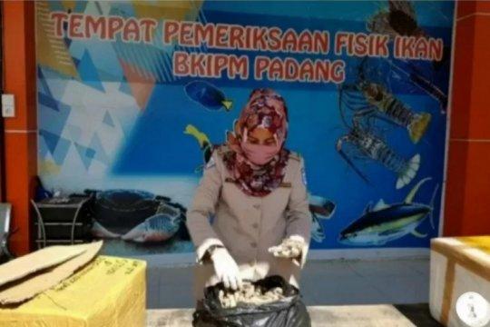 SKIPM Padang: Hasil perikanan dipasarkan ke domestik Rp23,7 miliar