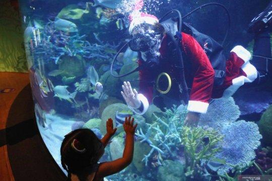 Suasana Natal di akuarium Sea Life Bangkok