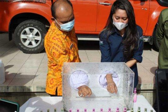 Enesis donasikan produk kesehatan cegah DBD kala pandemi