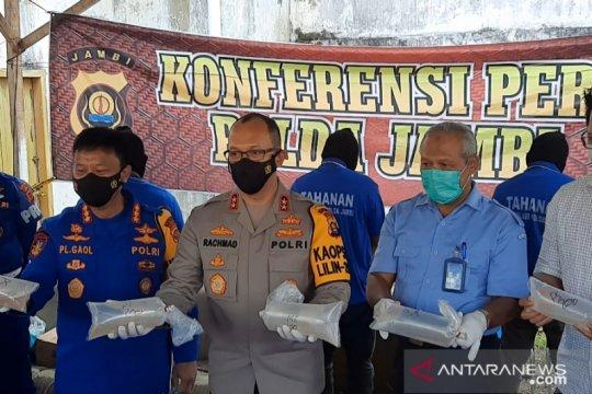 Polisi Jambi gerebek gudang benih lobster senilai Rp13 miliar