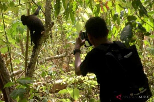 Dinas Kehutanan Sumsel siapkan tiga kawasan ekosistem esensial