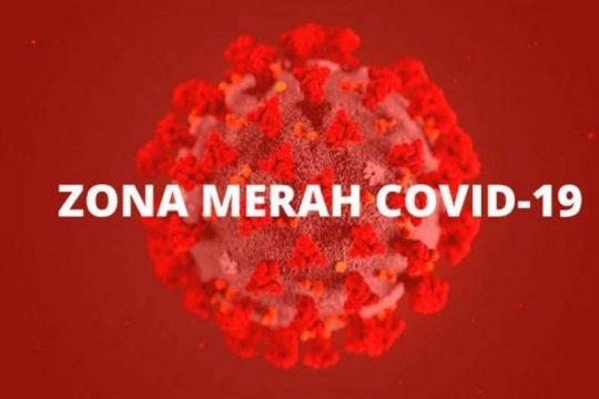 Delapan daerah di Kalteng zona merah kasus COVID-19