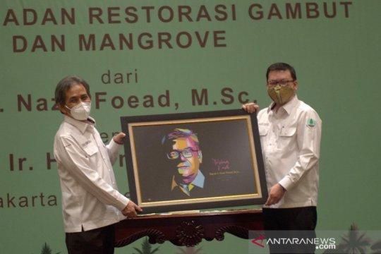 Kepala BRGM sebut restorasi gambut dan mangrove saling berhubungan
