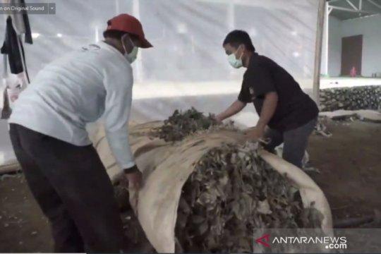 Enam komoditas Kapuas Hulu siap ekspor terkendala lockdown Malaysia