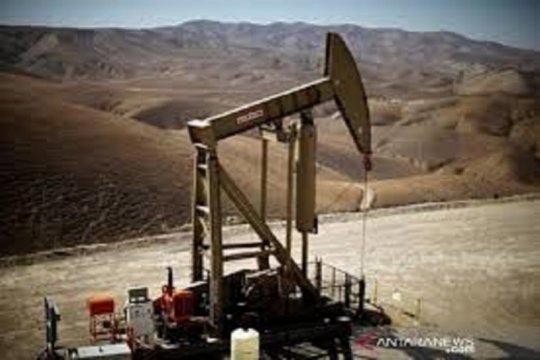 Harga minyak naik didorong data impor China dan pelemahan dolar